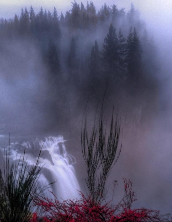 Nature220